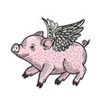 angel flying baby piggy engraving vector image vector image