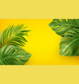 bright yellow summer background with tropical vector image vector image
