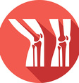 Broken Leg Icon vector image