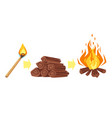 burning match firewood and bonfire vector image