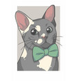 cat with bowtie vector image vector image