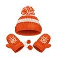 Hat and Mitten Set Winter Accessories vector image vector image