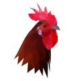 Polygonal of rooster head vector image