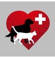Zoo vet emblem vector image