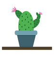 cactus in pot on white background vector image vector image