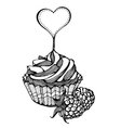 cupcakes with raspberries monochrome drawing vector image vector image