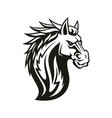 equestrian sport mascot isolated horse head vector image vector image