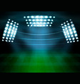 football stadium lighting composition vector image vector image