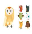 cartoon owl bird cute character sleep sweet owlet vector image