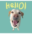 Hello card with polygonal dog vector image