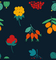 forest seamless pattern with berries vector image