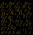 golden handwritten alphabet numbers and signs on vector image