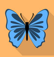 grey blue butterfly icon flat style vector image