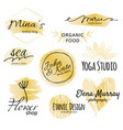 black and golden logo collection identity vector image