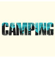 Camping sign vector image