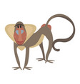 cartoon baboon a baboon vector image