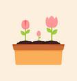 flower blooming garden graphic vector image