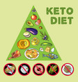 hand drawn ketodiet nutrition vector image vector image