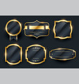 luxury golden badge and labels set design vector image