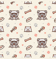 pug dog and cat with bone fish bones paw prints vector image