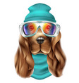 realistic spaniel dog ski suit portrait vector image vector image