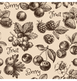 Vintage hand drawn sketch berries seamless pattern vector image vector image
