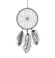 Dreamcatcher with detailed feathers Boho style vector image