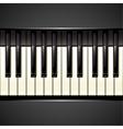 piano key vector image