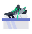lace-up sneakers on box icon flat isolated vector image