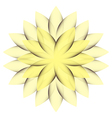 Yellow Wheel Flower vector image vector image