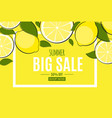 abstract summer sale background with lemon vector image vector image