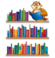 An owl above the wooden bookshelves with books vector image vector image