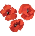 Flower Poppy set vector image