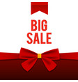 big sale stylish poster vector image