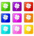 clover leaf icons 9 set vector image vector image