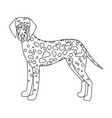 dalmatian single icon in outline styledalmatian vector image vector image
