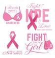 set breast cancer awareness pink card vector image
