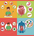 set of digestive system cards vector image