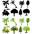 set plant and tree with its silhouette vector image