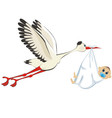 stork delivering a boy vector image