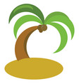 coconut tree on white background vector image vector image