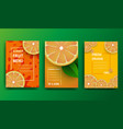 orange poster sliced slices of orange with leaves vector image vector image