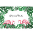 tropical border frame green leaves pink flamingos vector image vector image