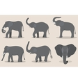 Gray elephant set vector image