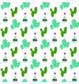 cactus tequila seamless pattern vector image vector image