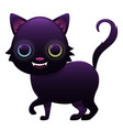 magic cat cute cartoon character vector image vector image