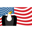 bald eagle and us flag symbol of america vector image vector image
