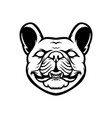 french bulldog mascot logo black and white bulldog vector image vector image