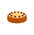 homemade cake with cherry berries isolated vector image
