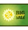 Big spring sale banner vector image